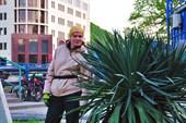 Первая встреченная пальма )