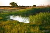 Бабинские озёра