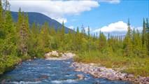 Река Малая Белая