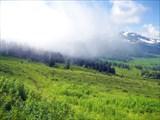 Туман с горы