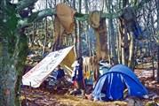 И в лагере совсем не праздничная обстановка. Все хотят в пещеру.