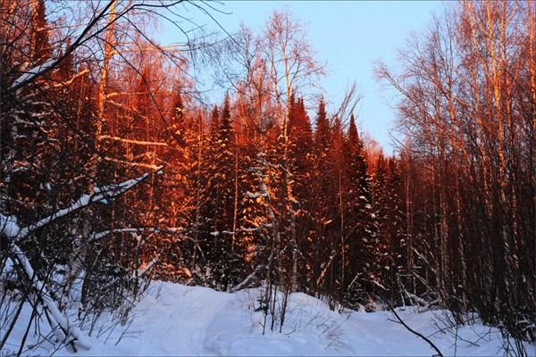 Рассвет на Уральском хребте
