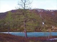 Озеро № 1