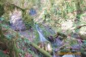 Водопад на ручье