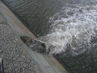 Слив воды с тротуаров в реку