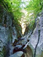 Пания-большой каньон 2009