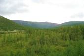Долина Ю. Колокольни