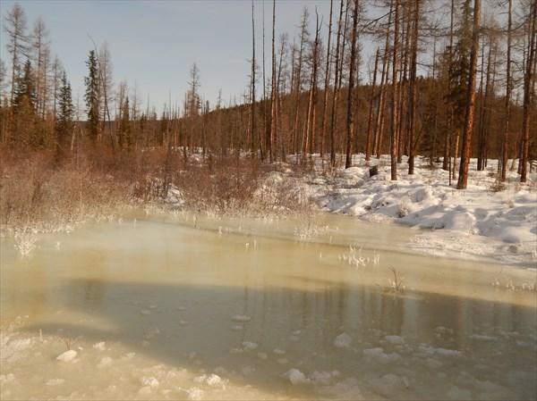 Незамерзающие реки Тофаларии