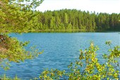 Чистые озёра Карелии.