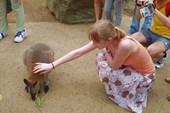 Оля и кенгуру