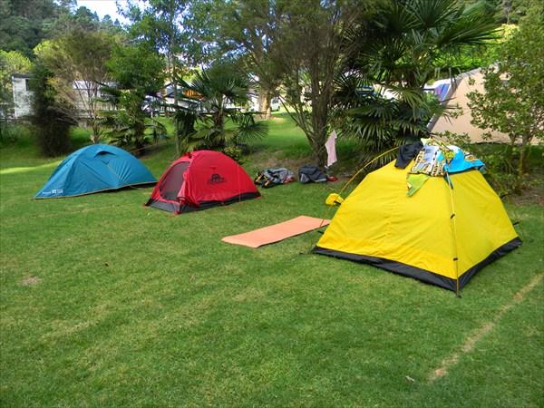 Кемпинг Taruru  нам выделил целую поляну под наши три палатки