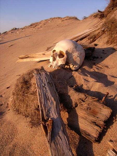 Кладбище в песках размывает ветрами, обнажая кости