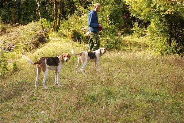 Виталя и собаки