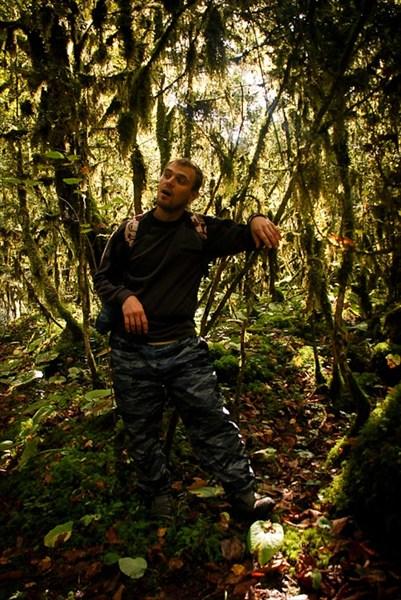 Гриша в джунглях