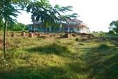 Городище Тагаунг
