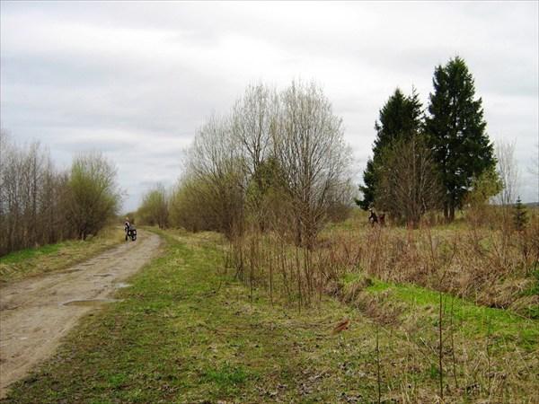 Начало старой дороги на Ферапонтово