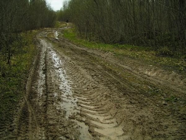 Старая дорога на Ферапонтово