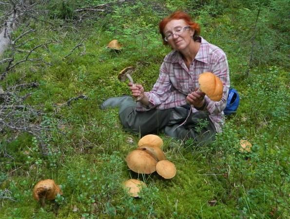 Ой, какие грибочки!