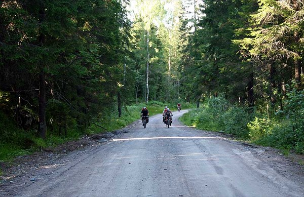 Фото. 93. Дремучая дорога оз Леплясюрью к трассе Р-21