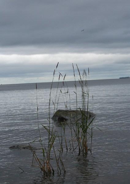 на фото: Онежское озеро в Петрозаводске