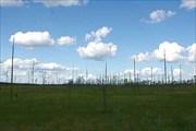 Фото. 59. Карельское болото недалеко от оз. Койваярви