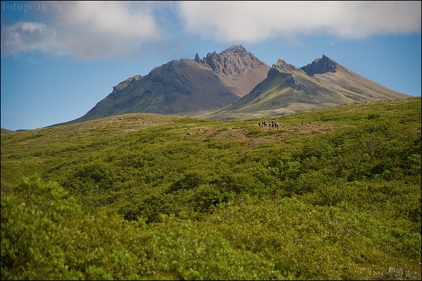 Национальный парк Скафтафель (Skaftafell)