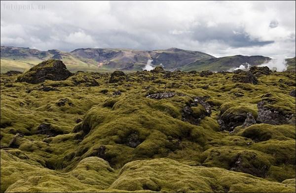 Поля из вулканического мха
