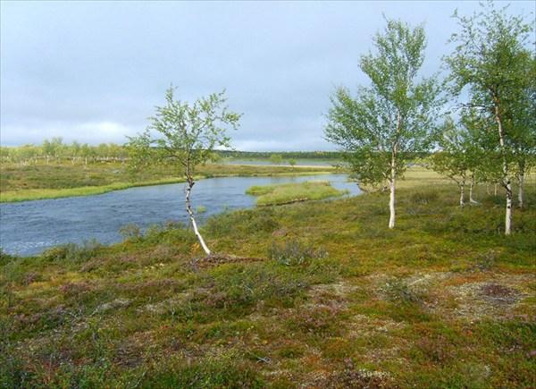 Истоки р.Nikulasjoki
