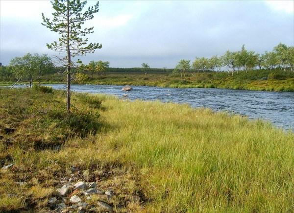 Nikulasjoki