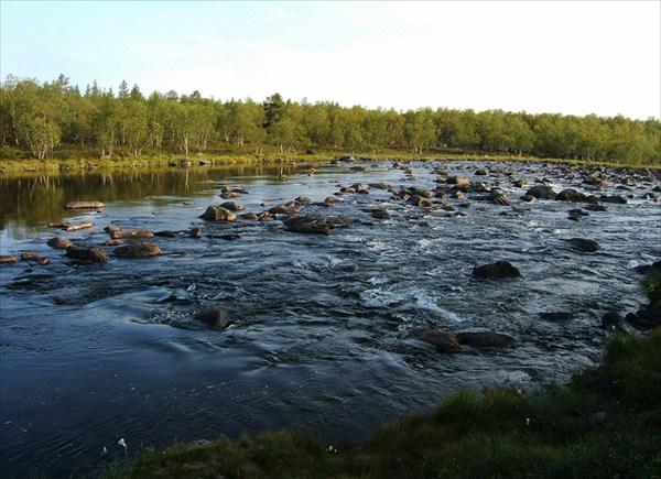 Частокол камней перегораживает реку