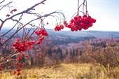С горы Пихтовый Гребень