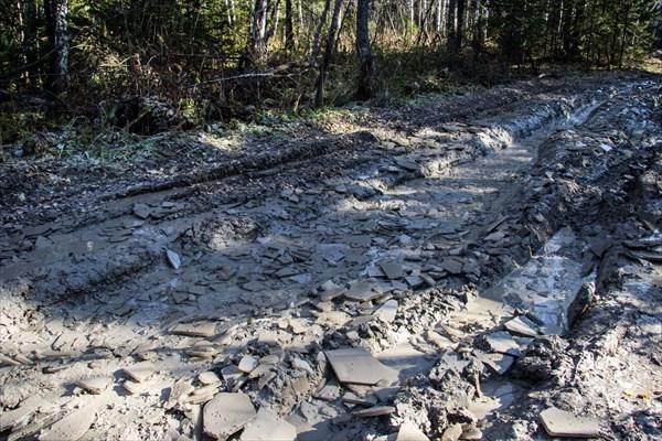 Дорога на Пихтовый