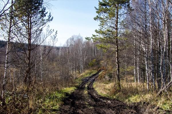 Дорога на п. Мирный