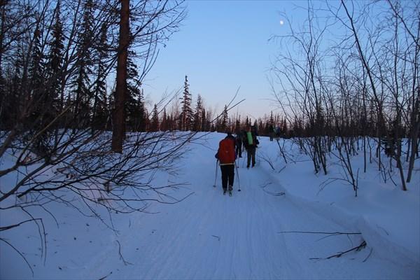 Вход в лесную зону