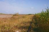 Дорога Черусти-Уршельский