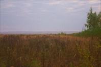 Таинственное очарование болота
