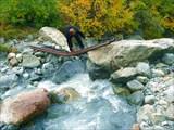 Переправа через ручей на пути к Турьему озеру