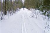 Путь долгий и прямой
