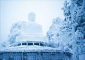 Большая статуя Будды Шакьямуни.