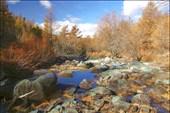 Долина реки Сайлюгем на границе леса