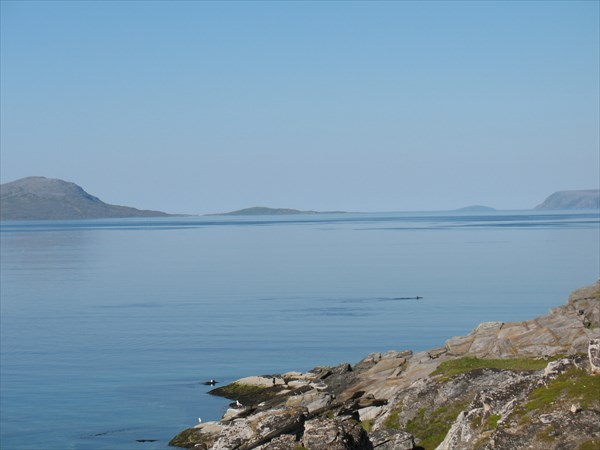 Вид на Бакфьорд с дороги № 889