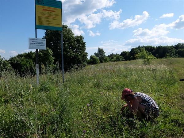 На подступах к Долгой поляне