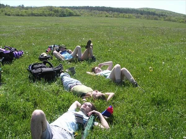развалились в траве