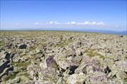 Вершинное плато