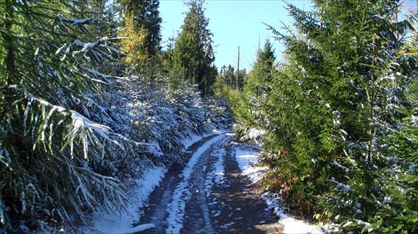 Снежное обрамление дороги