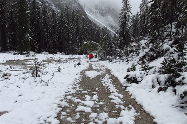 На высоте 1600 метров уже не так много снега