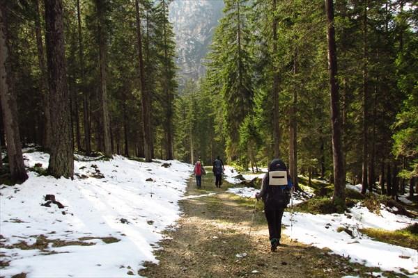 В лесу над Ponticello