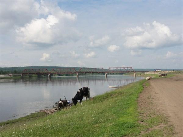 Мост у Малеево.