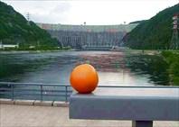 Фото. 77. Грейпфрут и Саяно-Шушенская ГЭС