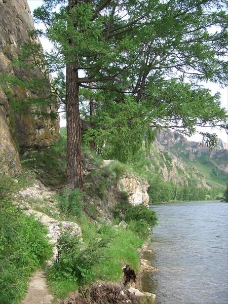 Тропа у грота Проскурякова не правом берегу Белого Июса.